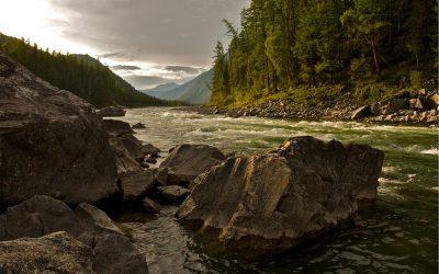Les bases fondamentales pour préserver l'environnement